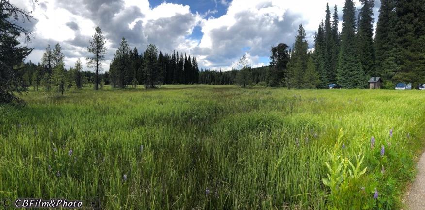 Mt Hood Trail